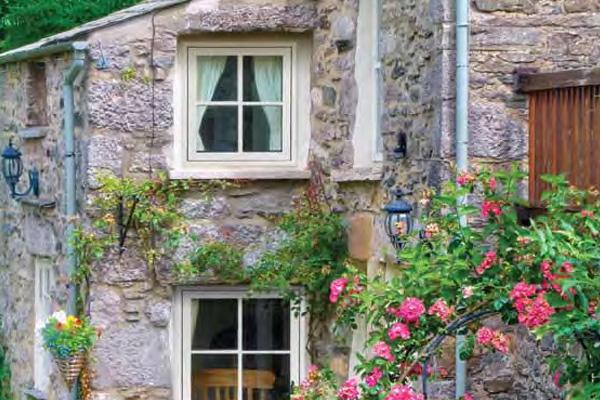 Paradise Windows